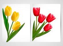 Set Fahnen mit bunter Blume Lizenzfreie Stockfotos
