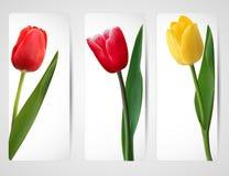 Set Fahnen mit bunter Blume Stockbild