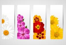 Set Fahnen mit unterschiedlicher bunter Blume Lizenzfreie Stockbilder