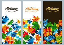 Set of fall banners with multicolor maple autumn leaves. Vector autumnal illustrations. Set of fall banners with multicolor maple autumn leaves. Vector autumnal Royalty Free Stock Photography