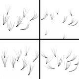 A set of false eyelashes, black eyelashes Stock Image