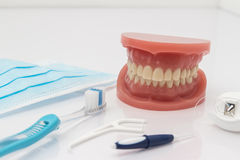 Set of false teeth with cleaning tools. Set of false teeth with dental cleaning tools including a toothbrush, dental floss, disposable face mask and plastic Stock Images