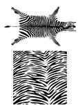 Set of fantastic zebra pattern. Black and white striped texture of exotic  animal in Africa Royalty Free Stock Photo