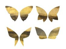 Set of fantasy gold and black butterfly wings Royalty Free Stock Image