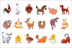 Set of farm animals. Livestock and poultry. Various domestic birds, horses, pig, rabbit, sheep, cats and dogs. Colorful. Set of farm animals. Livestock and Stock Images