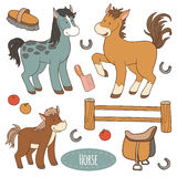 Set of farm animals and objects, vector family horse. Set of cute farm animals and objects, vector family horse Royalty Free Stock Photos