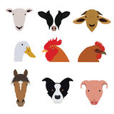 Set of Farm Animals and Pets Vectors and Icons Stock Image