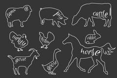 Set of farm animals silhouettes Royalty Free Stock Photos