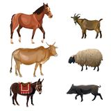 Set of farm animals vector illustration