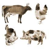 Set of farm animals. Watercolor illustration in white background. Handwork watercolor illustration of farm animals in white background. Sepia stock illustration