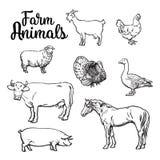 Set of farm animals on the white background Royalty Free Stock Image