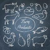 Set of farm food icons in sketch style on chalkboard. Hand drawn animals, vegetables and fruits Royalty Free Stock Photos