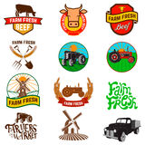 Set of farm fresh products labels, emblems and design elements. Stock Images