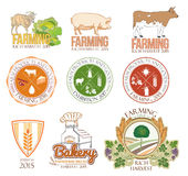 Set of farm and livestock logos and badges. Stock Photos