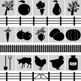 Set of farm production icons. Vector illustration of animal , plant and tools Royalty Free Stock Photo