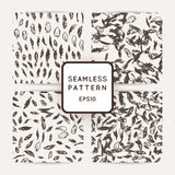 Set of feather seamless patterns. Hand drawn doodle vector backgrounds. Royalty Free Stock Images