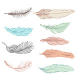 Set of feather Royalty Free Stock Images