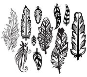 Set of Feathers. In black and white graphic style stock illustration