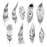 Set of feathers. Set of decorative black and white feathers royalty free illustration