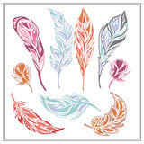 Set feathers  different colors. Set of decorative colored feathers on a white background. Isolated elements of contemporary design products for decoration theme Royalty Free Stock Photography