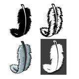 Set of Feathers types with different concept Royalty Free Stock Photos