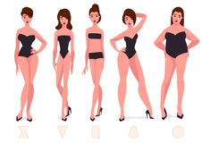 Set of female body shape types - five types. Vector cartoon illustration Stock Photography