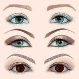 Set of a female eye with makeup Royalty Free Stock Photo