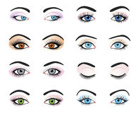 Set of female eyes and brows image Royalty Free Stock Photo