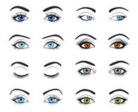 Set of female eyes and brows image Stock Photo