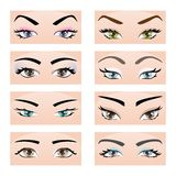 Set of female eyes and eyebrows. Vector illustration, eps10 Stock Photos
