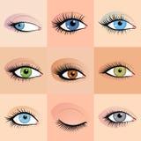 Set of female eyes images with beautifully fashion Royalty Free Stock Images