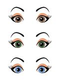 Set female eyes isolated Royalty Free Stock Images
