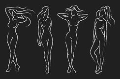 Set of female figures. Collection of outlines of young girls. Stylized slender body. Drawing on a chalkboard. vector illustration