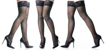 b8e85040c5c Set female legs in black high heels shoes black stockings fashion. On white  background isolation