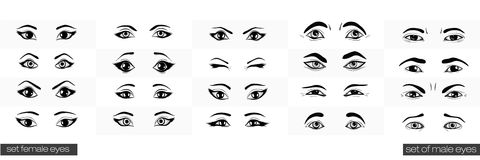 Set of female and male views of the eye Stock Photo