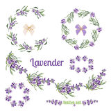 Set festive frames and elements with Lavender flowers for greeting card. Botanical illustration. Royalty Free Stock Photo