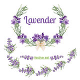 Set festive frames and elements with Lavender flowers for greeting card. Botanical illustration. Stock Photography