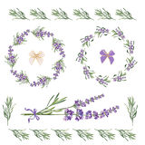 Set festive frames and elements with Lavender flowers for greeting card. Botanical illustration. Set festive frames and elements with Lavender flowers for Royalty Free Stock Photography