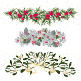 Set festive garlands of holly berry and  cineraria Royalty Free Stock Photo