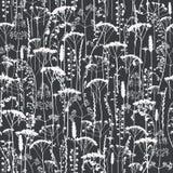 Set of field flowers, herbs. Element of seamless pattern. Paper design. Print element. Monochrome stock illustration