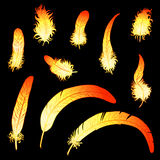 Set fiery feathers of rooster or phoenix. Set of 10 fiery feathers of a rooster or phoenix on a black background. A fiery red rooster - a symbol of new year 2017 Royalty Free Stock Photos