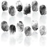 Set of fingerprints,  illustration. Isolated on white Stock Image
