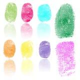 Set of fingerprints, vector illustration. Set of colored fingerprints, vector illustration isolated on white Stock Photos