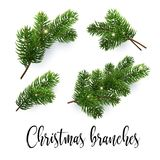 Set of fir branches. Christmas tree, pine, conifer. Set of fir branches. Christmas tree, pine. Realistic detailed vector illustrations. Symbol of Christmas and Stock Images