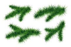 Set of fir branches. Symbol of  New Year. Set of fir branches. Christmas tree. Vector illustration isolated on white background. Symbol of  New Year Stock Images