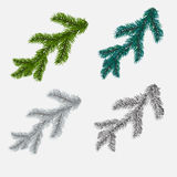 Set of fir, pine branches  on white background. illustration. Set of fir, pine branches  on white background. Vector illustration Stock Images
