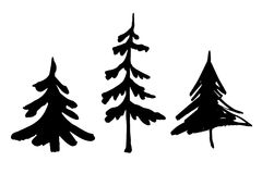 Set of fir tree silhouettes. Christmas tree. Vector fir tree silhouettes. Set of vector objects for decoration design Royalty Free Stock Image