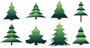 The set of the fir-trees and pines Royalty Free Stock Image