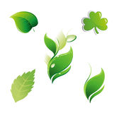Set of Fire Icons Elements Vector. Set of Green Leaves. Floral Leaf Element Vector Royalty Free Stock Image