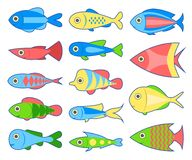 Set of fish. Bright tropical fish isolated on white background. Vector illustration vector illustration